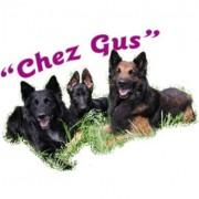 (c) Chezgus.ch
